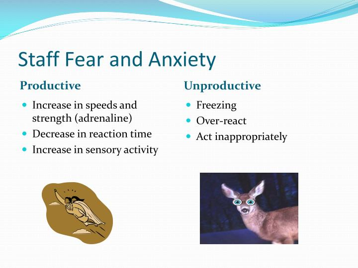 Staff Fear and Anxiety
