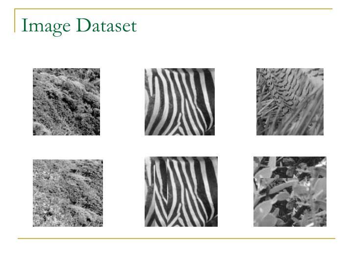 Image Dataset
