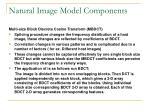 natural image model components
