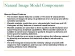 natural image model components1