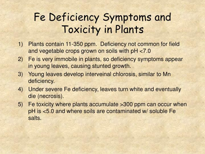 Fe Deficiency Symptoms and