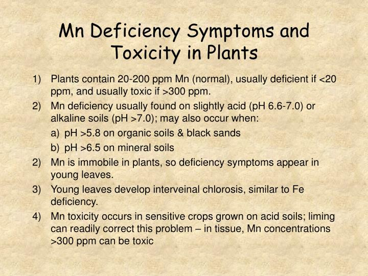 Mn Deficiency Symptoms and