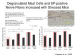 degranulated mast cells and sp positive nerve fibers increased with stressed mice