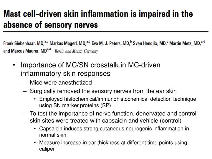Importance of MC/SN crosstalk in MC-driven inflammatory skin responses
