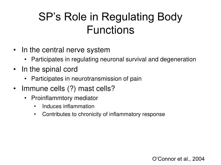 SP's Role in Regulating Body Functions