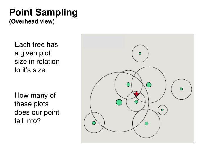 Point Sampling