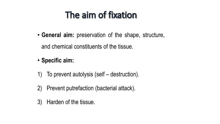 The aim of fixation