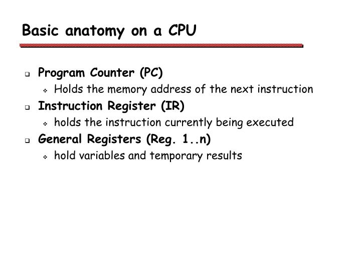 Basic anatomy on a CPU
