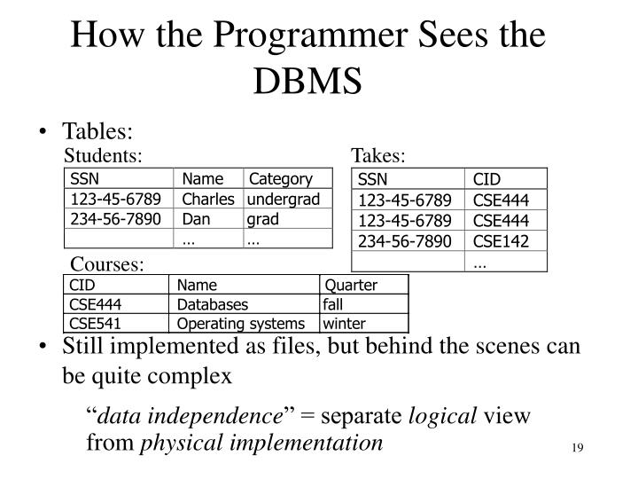 How the Programmer Sees the DBMS