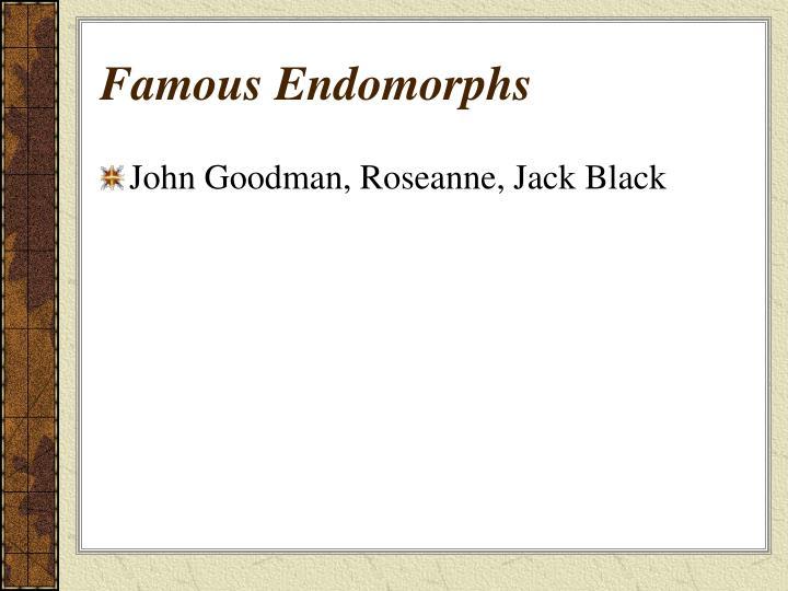 Famous Endomorphs