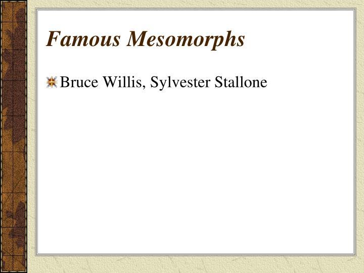 Famous Mesomorphs