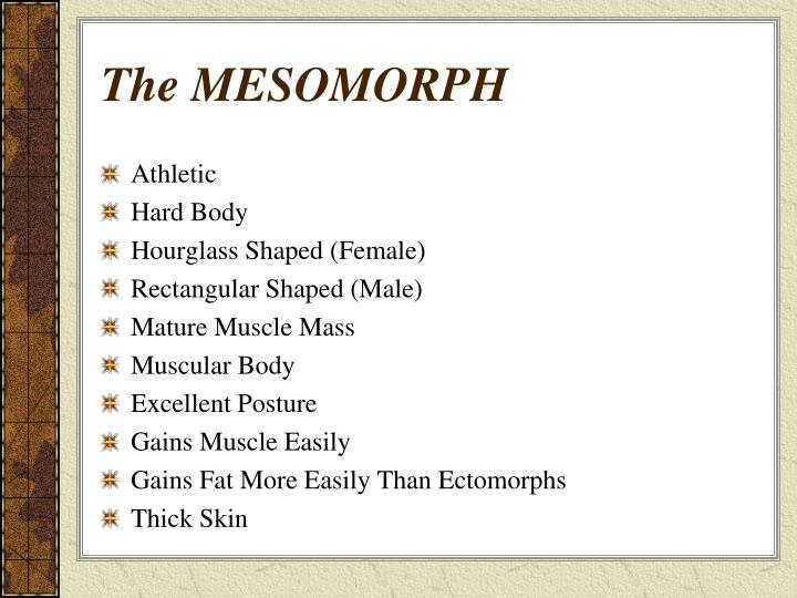 The MESOMORPH
