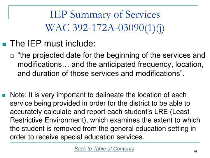 IEP Summary of Services