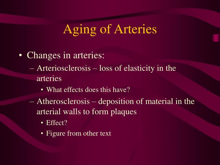 Aging of Arteries