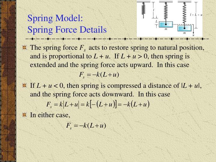 Spring Model: