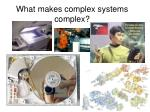 what makes complex systems complex