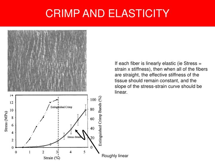 CRIMP AND ELASTICITY