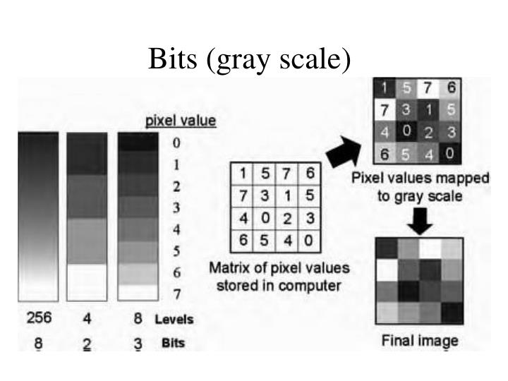 Bits (gray scale)
