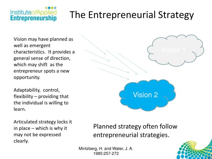 The Entrepreneurial Strategy