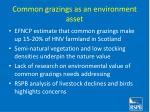 common grazings as an environment asset