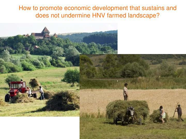 How to promote economic development that