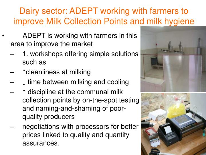 Dairy sector: ADEPT working with farmers to improve Milk Collection Points and milk hygiene