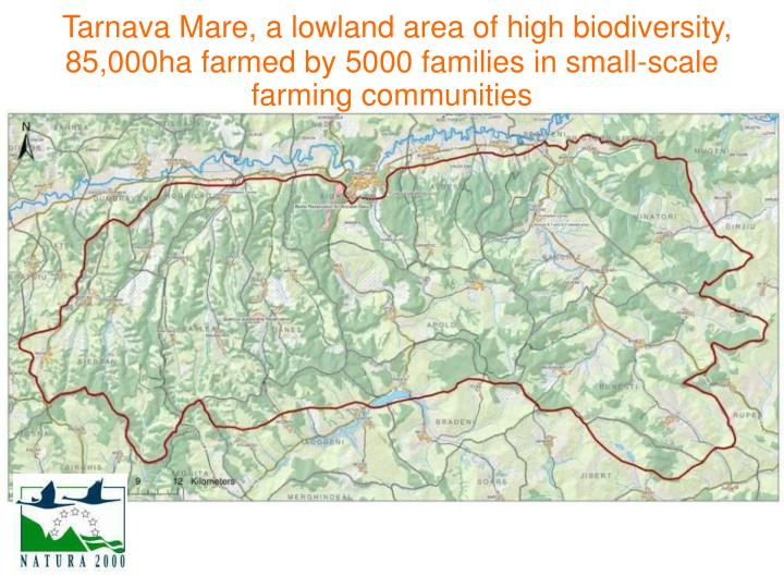 Tarnava Mare, a lowland area of high biodiversity, 85,000ha farmed by 5000 families in small-scale