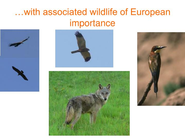 …with associated wildlife of European importance