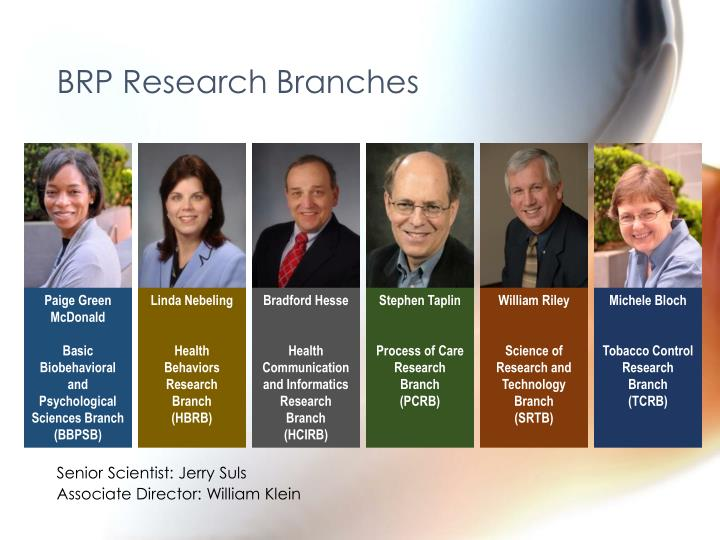 BRP Research Branches