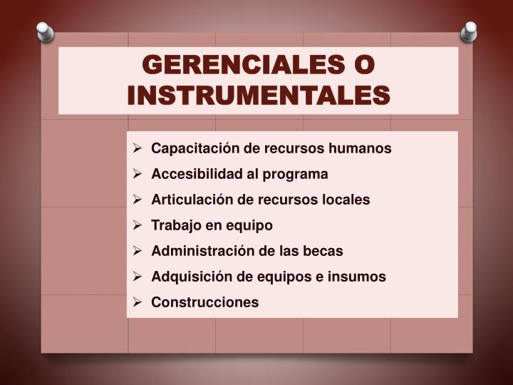GERENCIALES O INSTRUMENTALES