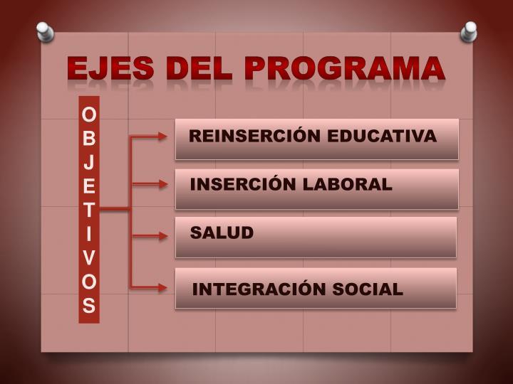 Ejes del Programa