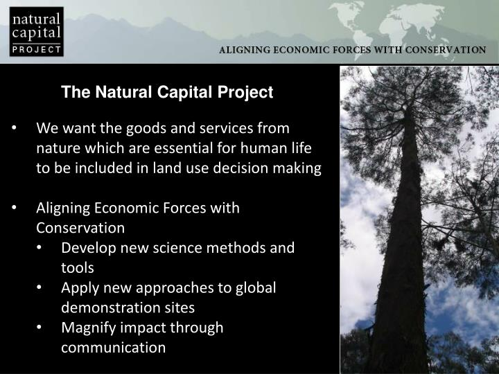 The Natural Capital Project