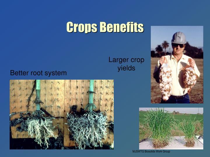 Crops Benefits