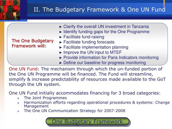 Clarify the overall UN investment in Tanzania