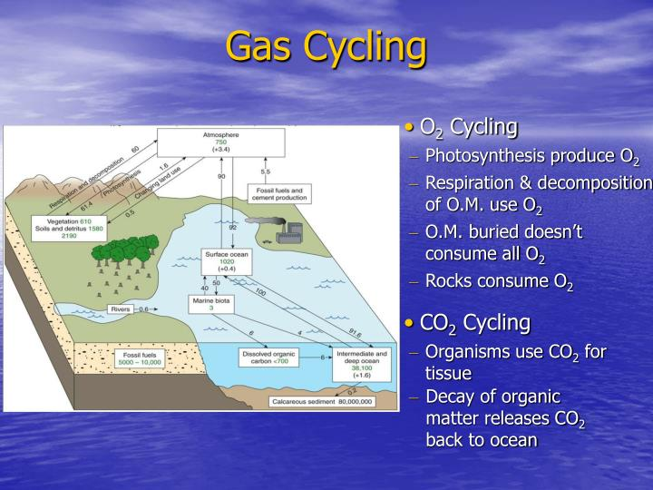 Gas Cycling