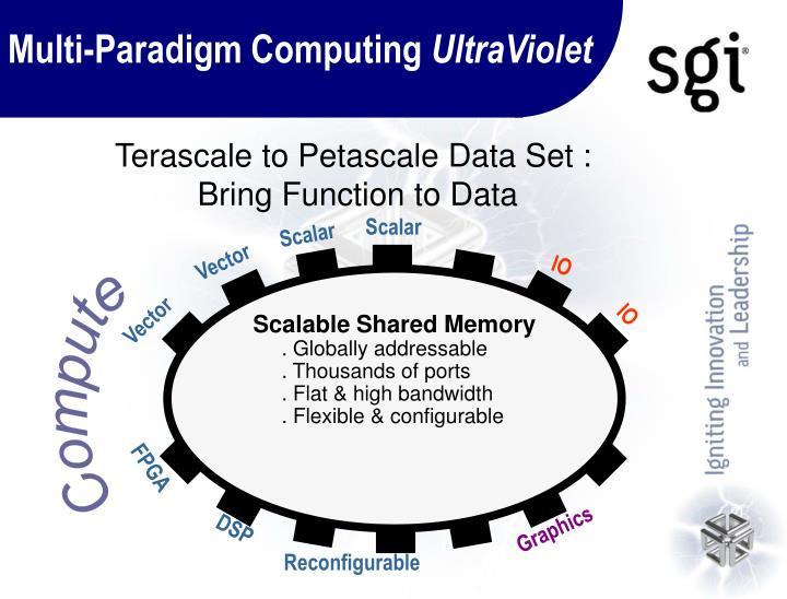 Multi-Paradigm Computing