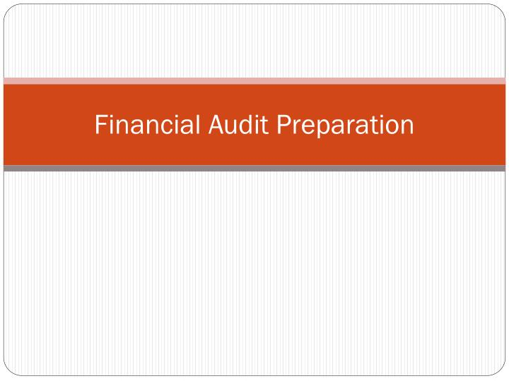 Financial Audit Preparation
