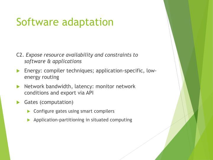 Software adaptation
