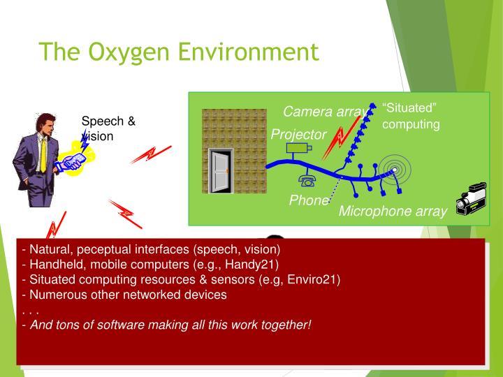 The Oxygen Environment