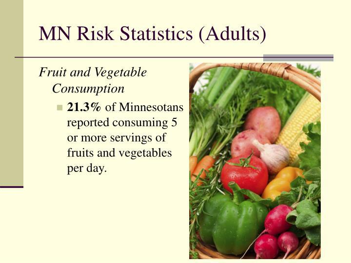 MN Risk Statistics (Adults)
