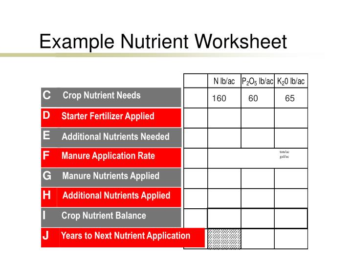 Example Nutrient Worksheet