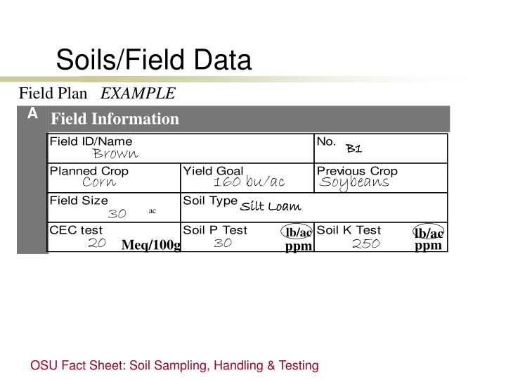 Soils/Field Data