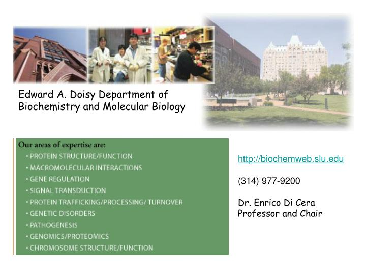 Edward A. Doisy Department of