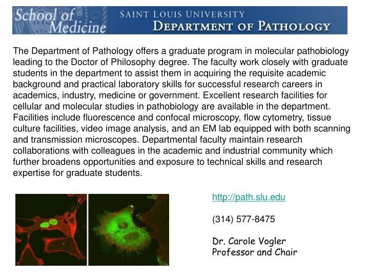 The Department of Pathology offers a graduate program in molecular pathobiology leading to the Doctor of Philosophy degree. The faculty work closely with graduate students in the department to assist them in acquiring the requisite academic background and practical laboratory skills for successful research careers in academics, industry, medicine or government. Excellent research facilities for cellular and molecular studies in pathobiology are available in the department. Facilities include fluorescence and confocal microscopy, flow cytometry, tissue culture facilities, video image analysis, and an EM lab equipped with both scanning and transmission microscopes. Departmental faculty maintain research collaborations with colleagues in the academic and industrial community which further broadens opportunities and exposure to technical skills and research expertise for graduate students.