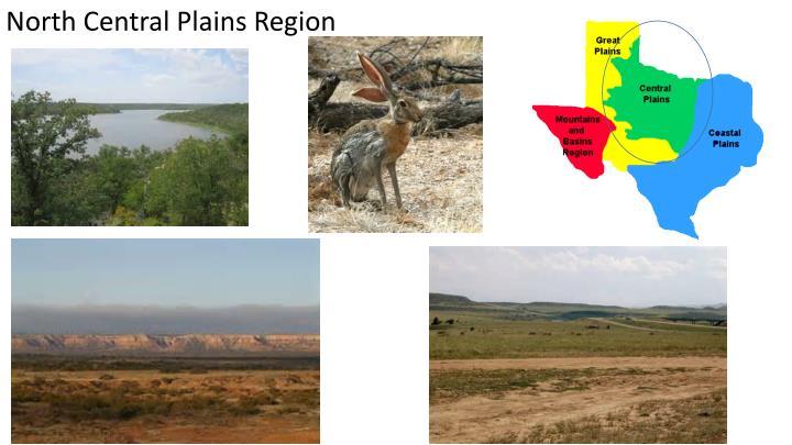 North Central Plains Region