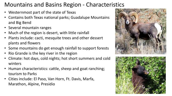 Mountains and Basins Region - Characteristics