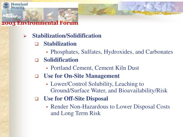 Stabilization/Solidification