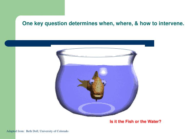 One key question determines when, where, & how to intervene.