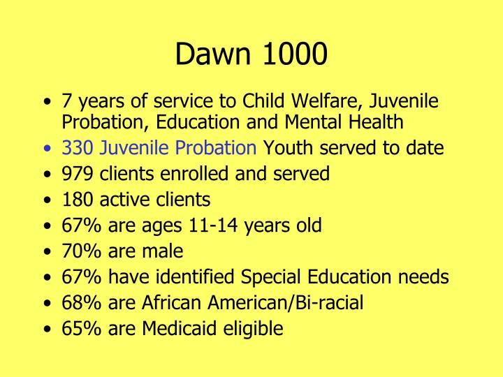 Dawn 1000