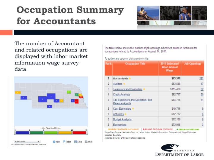 Occupation Summary for Accountants